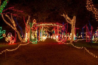 10 ways to let the good tidings roll in dallas this december - Christmas Light Show Dallas