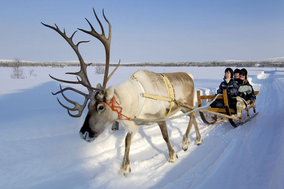 Find reindeer-pulled sled rides at reindeer farms in Iso-Syote, Finland
