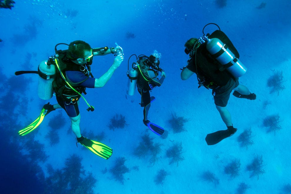 Best caribbean dive site winners 2017 10best readers 39 choice travel awards - Best dive trips ...