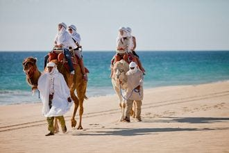 Cabo Adventures Outback & Camel Safari