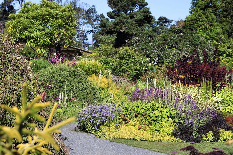 Best botanical garden winners 2017 10best readers 39 choice - Mendocino coast botanical gardens ...