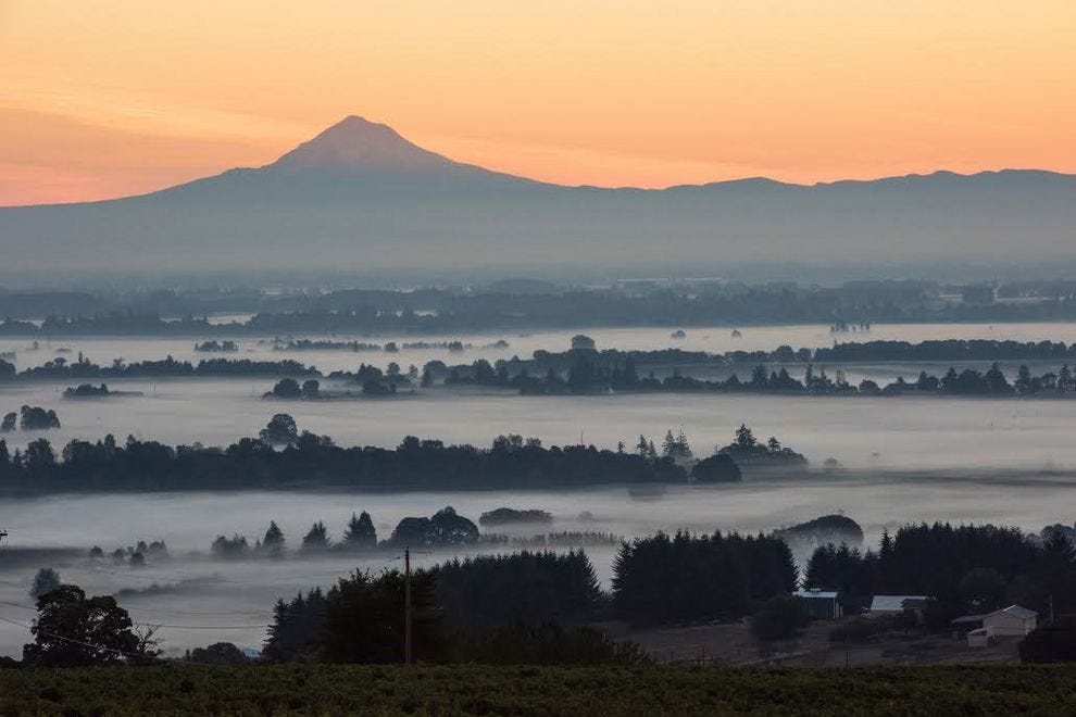 Watch the total solar eclipse from wineries in the Willamette Valley