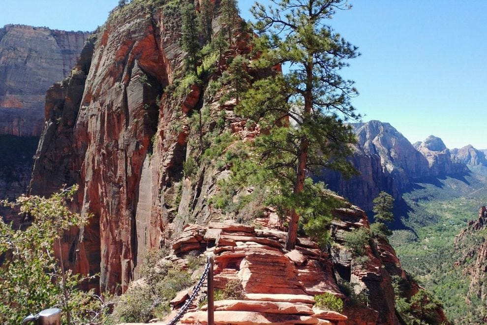 Hiking The Dangerous And Beautiful Angel S Landing Trail