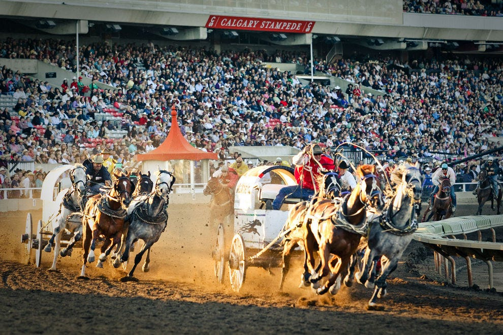 Calgary Stampede and Rodeo
