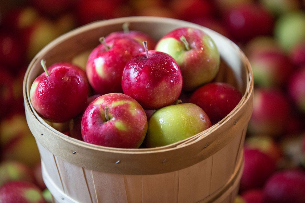 Pick several varieties of apples at this family-owned orchard