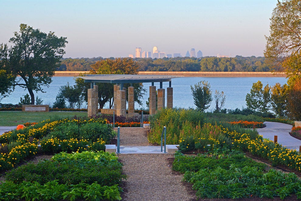 From edible flowers to botanical art, Dallas is blooming