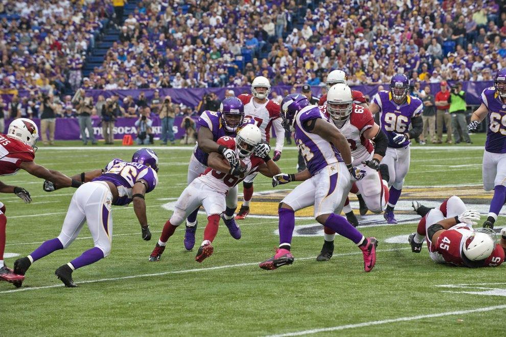 The Minnesota Vikings NFL football team enjoys a band of staunch supporters