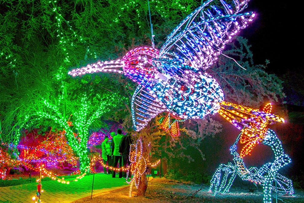Vote ZooLights At The Phoenix Zoo Best Zoo Lights Nominee  - Phoenix Zoo Christmas Lights