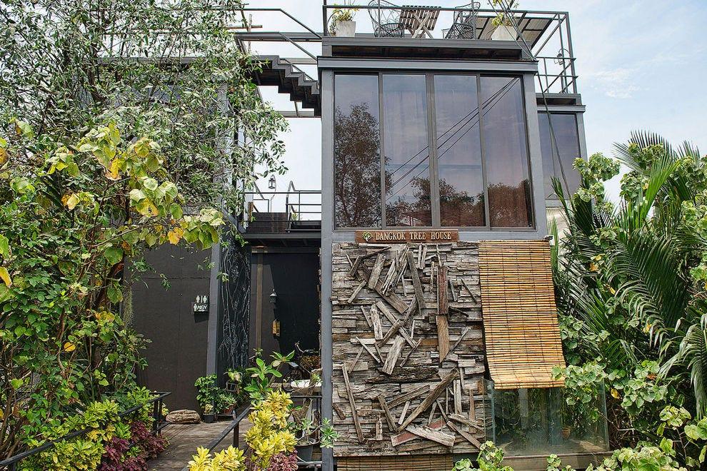 曼谷的树屋