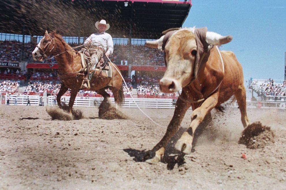 Best Rodeo Winners 2018 10best Readers Choice Travel Awards