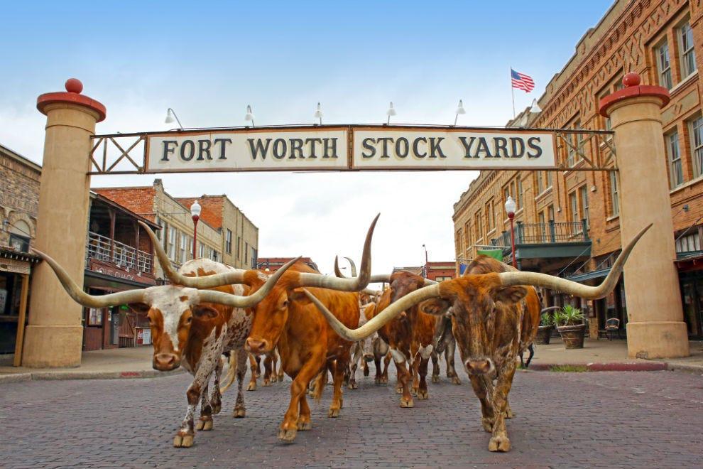Fort Worth weather essentials
