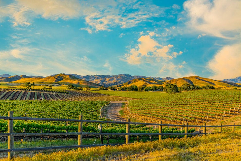 Stunning Santa Barbara vineyard
