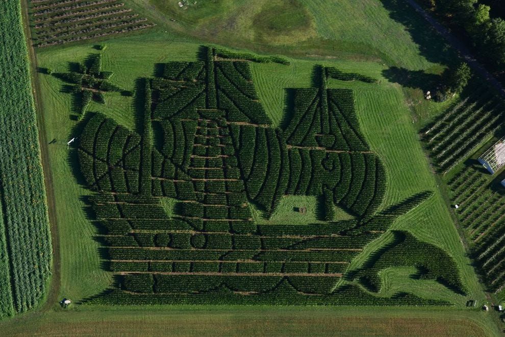 This year's winning maze depicts a ship at sail