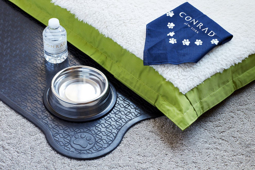 Four-legged guests get their own turndown service at Conrad New York