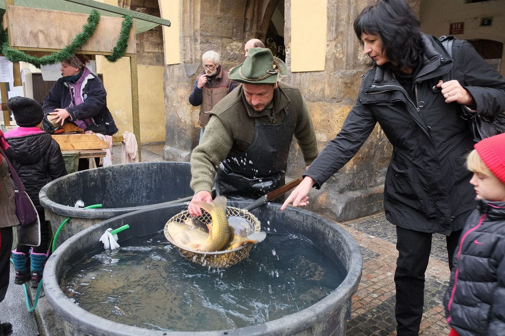 Czechs shop for carp in Christmas markets