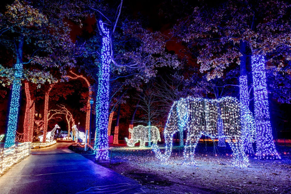 Christmas At The Zoo Indianapolis 2019.Best Zoo Lights Winners 2018 10best Readers Choice Travel