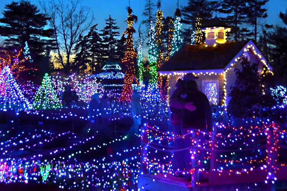 Botanical Garden Holiday Lights Winners