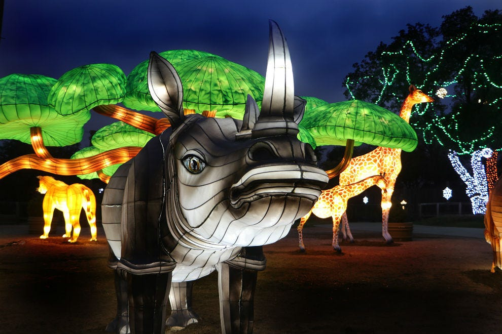 达拉斯动物园灯