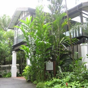 Singapore french food restaurants 10best restaurant reviews for Au jardin les amis