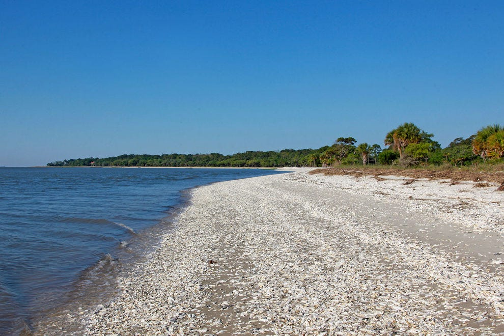 Daufuskie Island Beach covered with dried Oyster shells