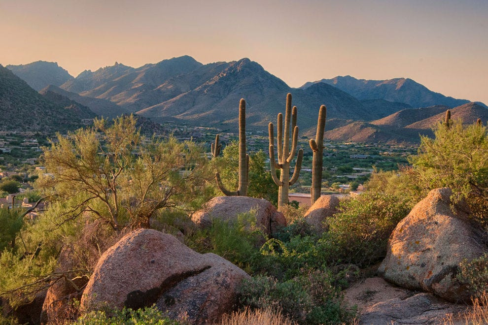 Pinnacle Peak in Scottsdale, Arizona offers hiking trails and many desert plants in the hills of Arizona.