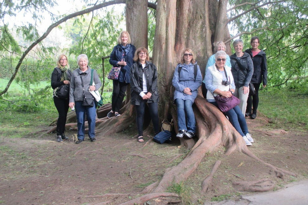 A group explores their roots in Germany on a Family Tree Tour