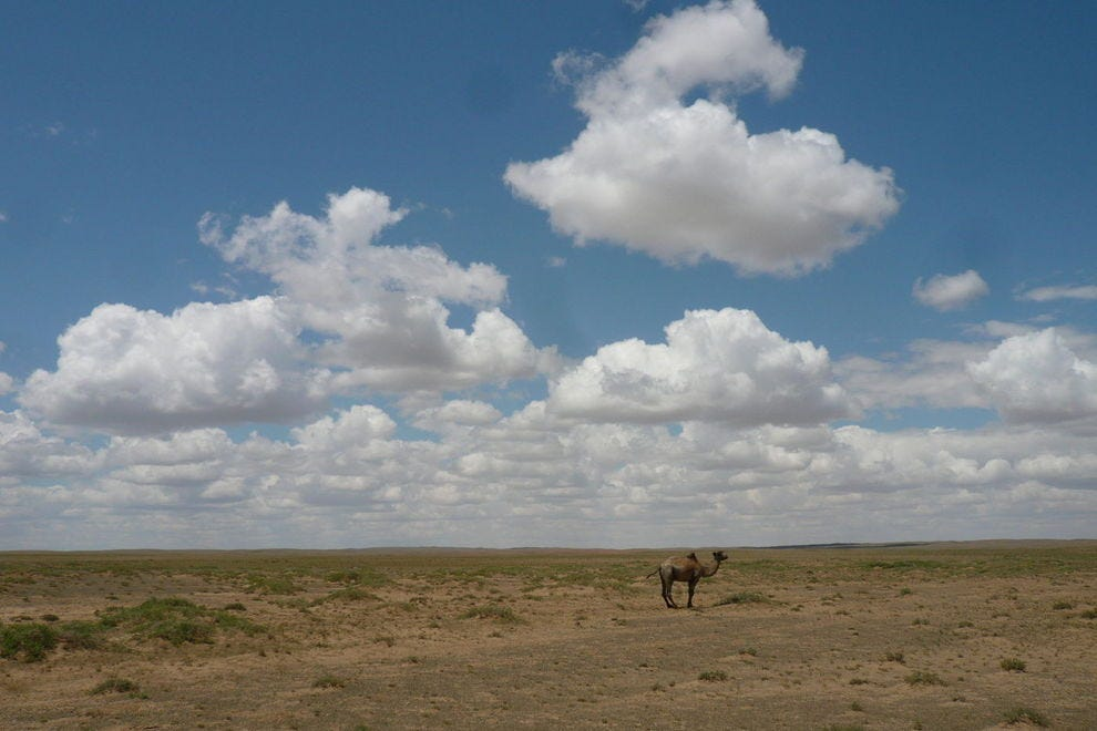 Traveling in Mongolia