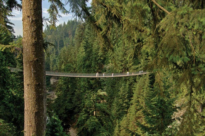 Photo courtesy of Capilano Suspension  Bridge and Park.