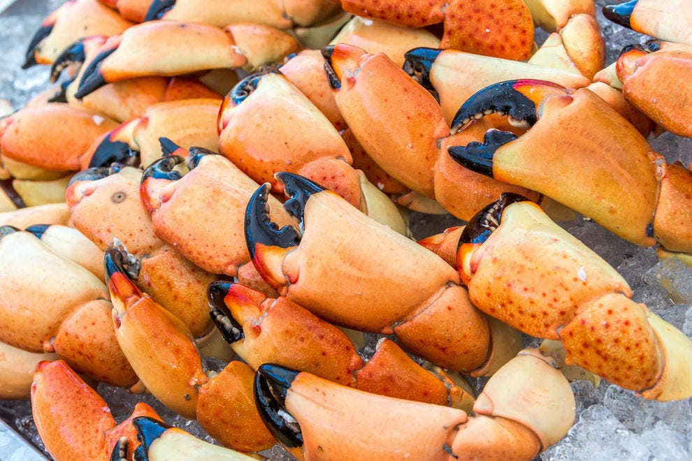 For stone crab, head to Florida between October and May