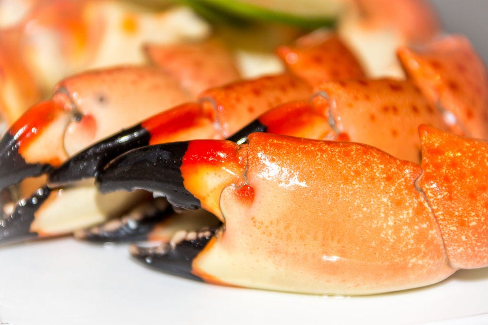 Fresh Florida stone crab