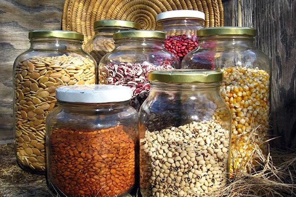 A variety of beans and seeds indigenous to the Sonoran Desert