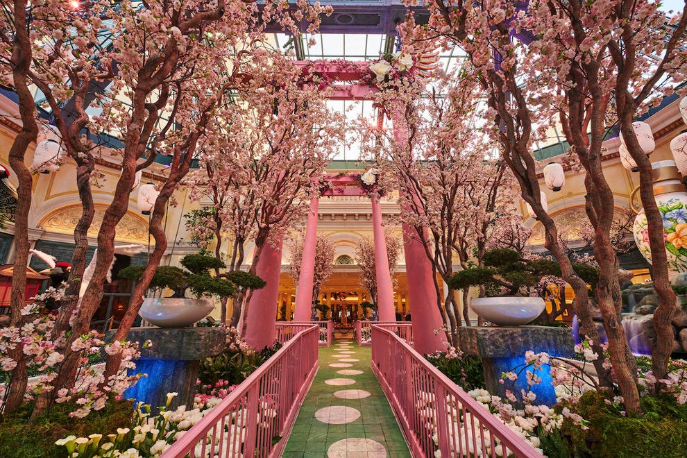 The spring display at the Bellagio Conservatory & Botanical Gardens