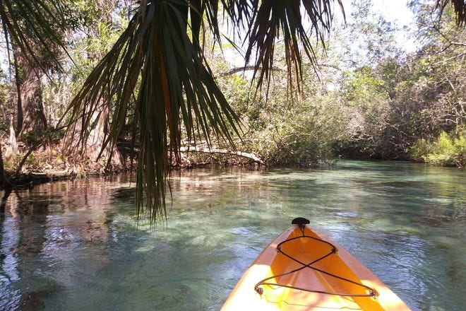 How to spend the day on this spring-fed river outside Tampa