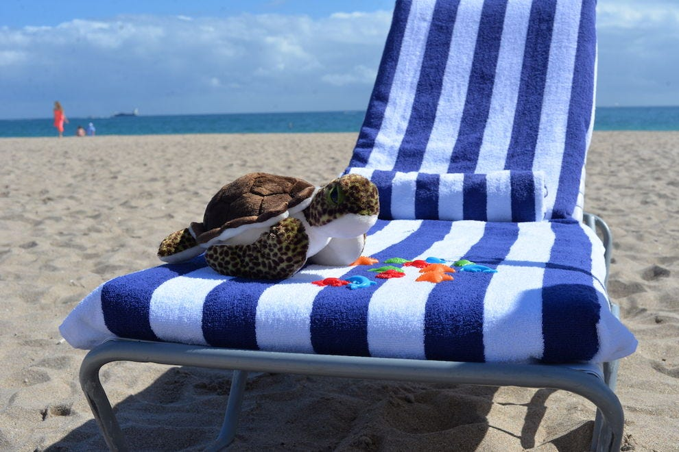 Adopt Shel-B, a stuffed plush sea turtle, to help protect real ones