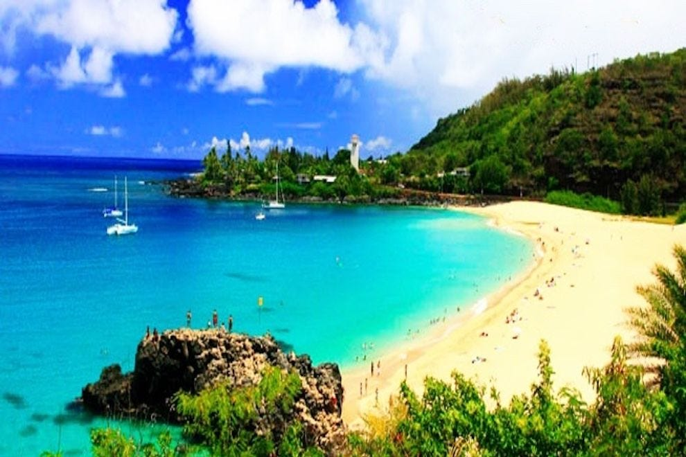 Vote - North Shore Beach Bus - Best Tour Company in Hawaii