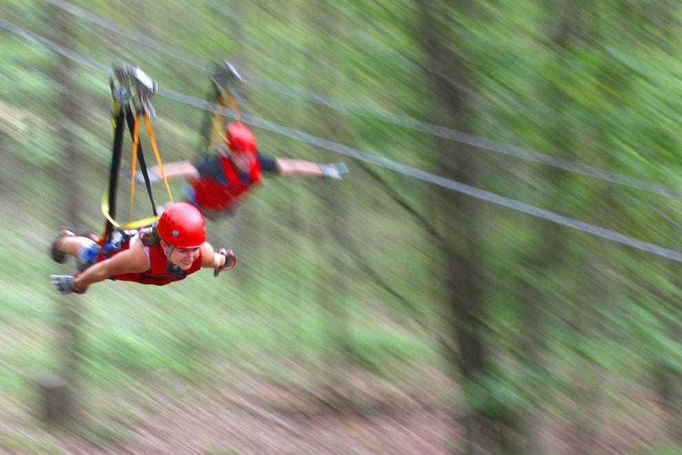 Zip-lining through the treetops is an exciting ride for the entire family
