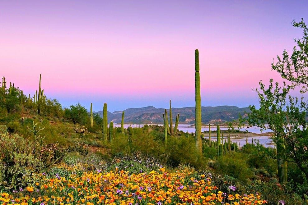 """This extraordinary sunset puts the """"pleasant"""" in Lake Pleasant"""
