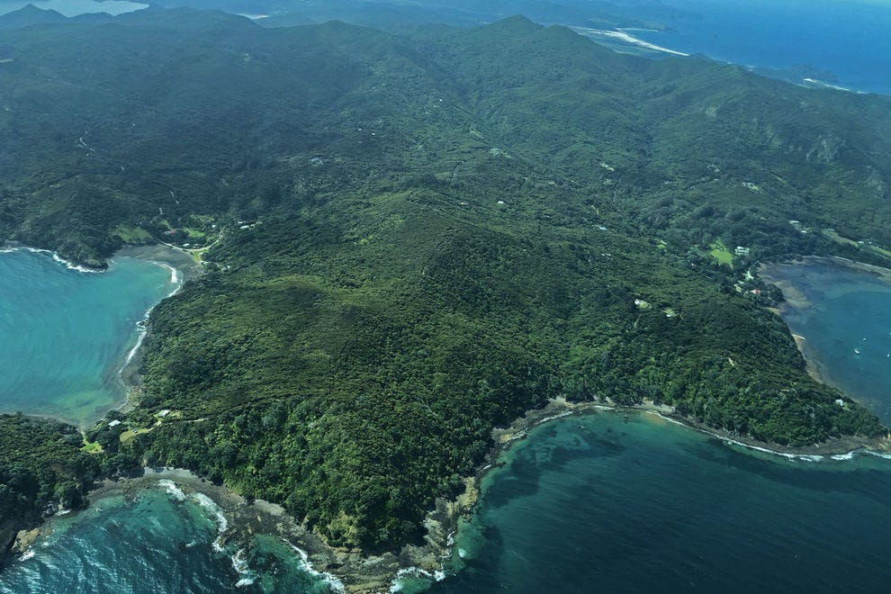 What it's like to stay on the remote Great Barrier Island in New Zealand