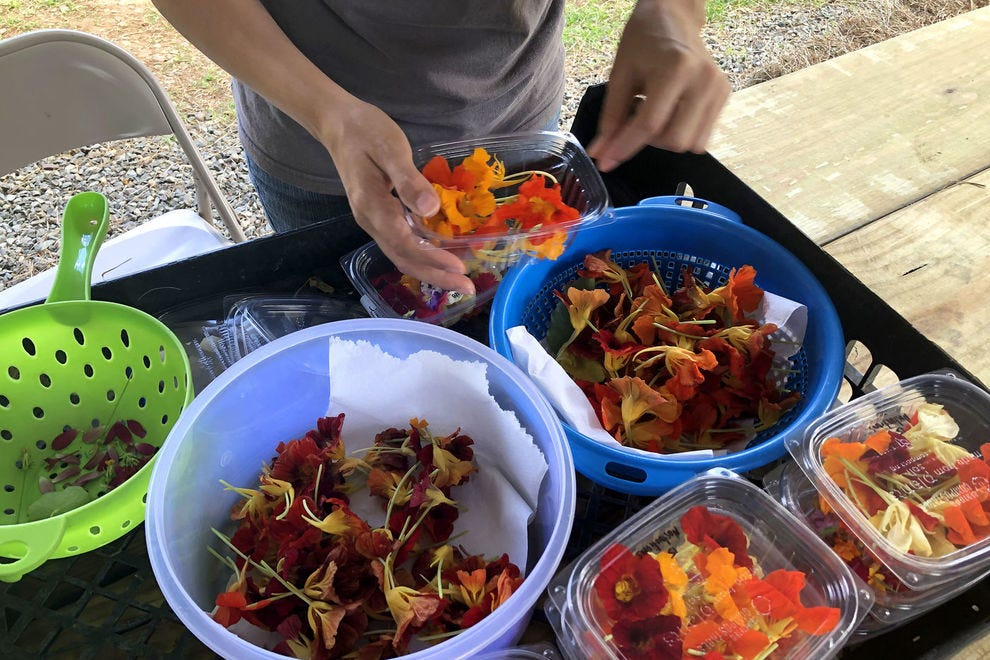 Edible flowers being packaged and ready to ship.