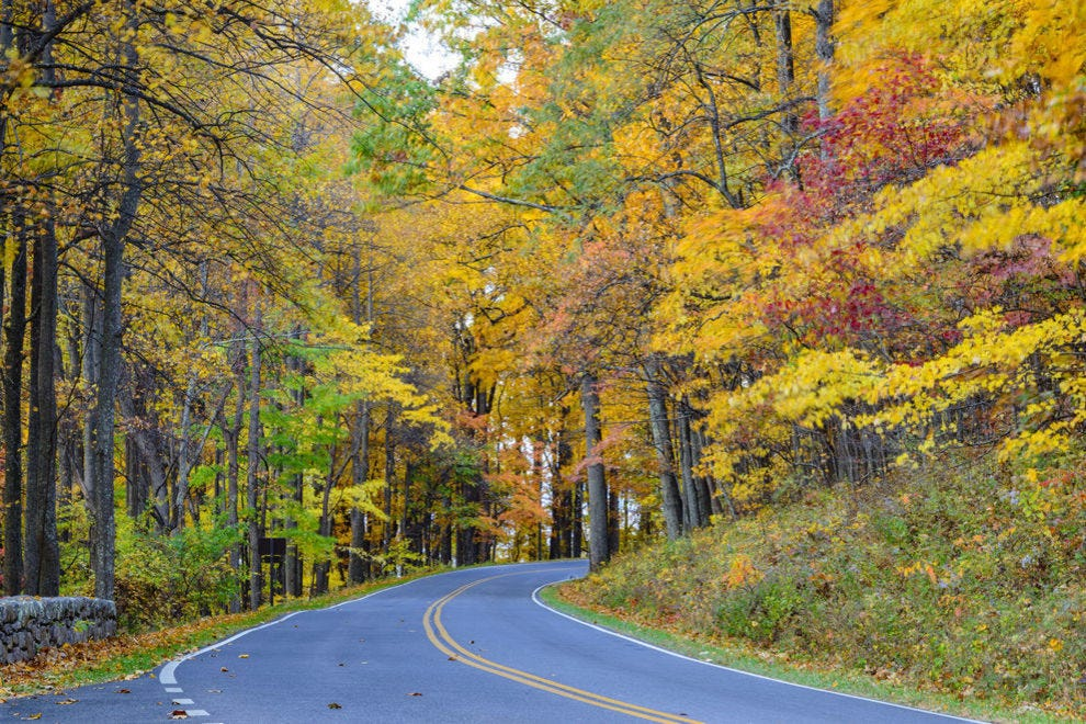Vote - Skyline Drive - Best Destination for Fall Foliage Nominee