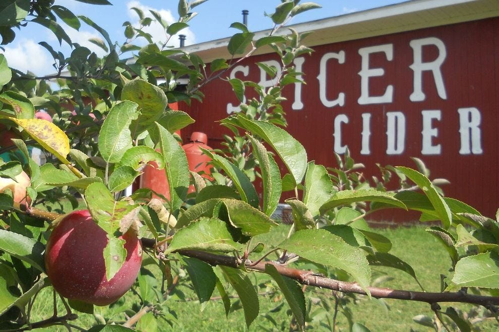 Spicer Orchards