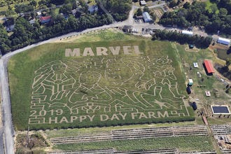 Happy Day Farm Corn Maze