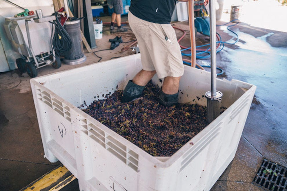 Good, old-fashioned foot stomping is still done on select grapes at Villa Creek in Paso Robles