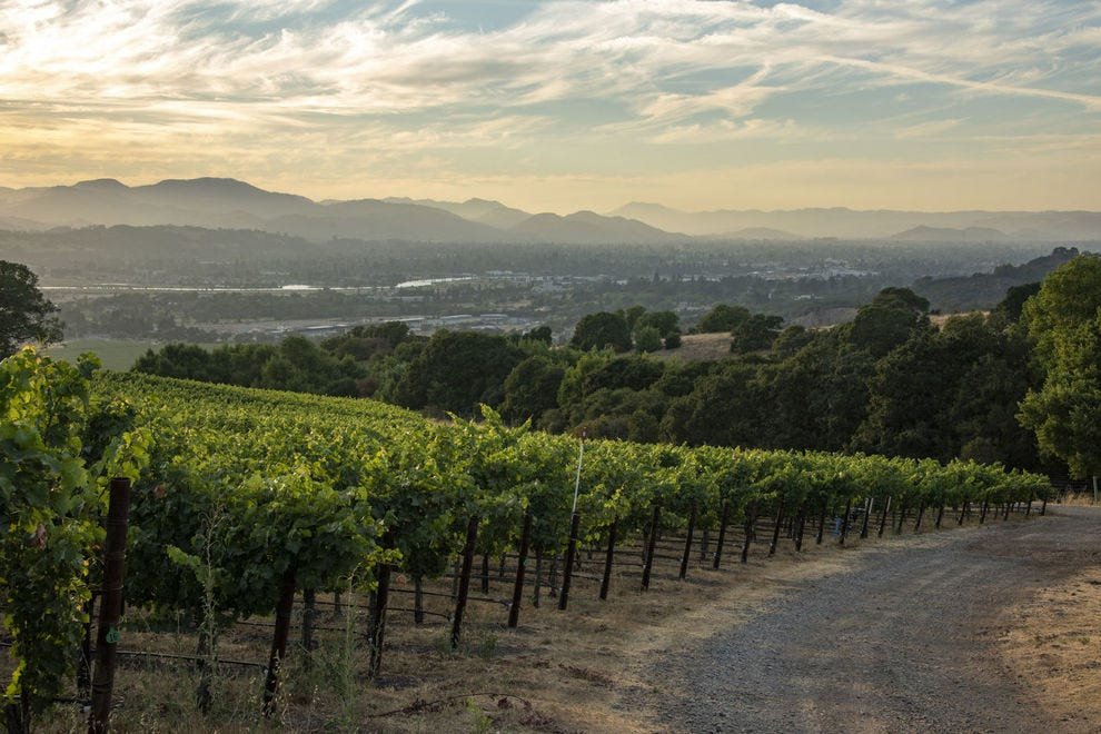 Cakebread was only the second winery ever to receive the Napa Green certification