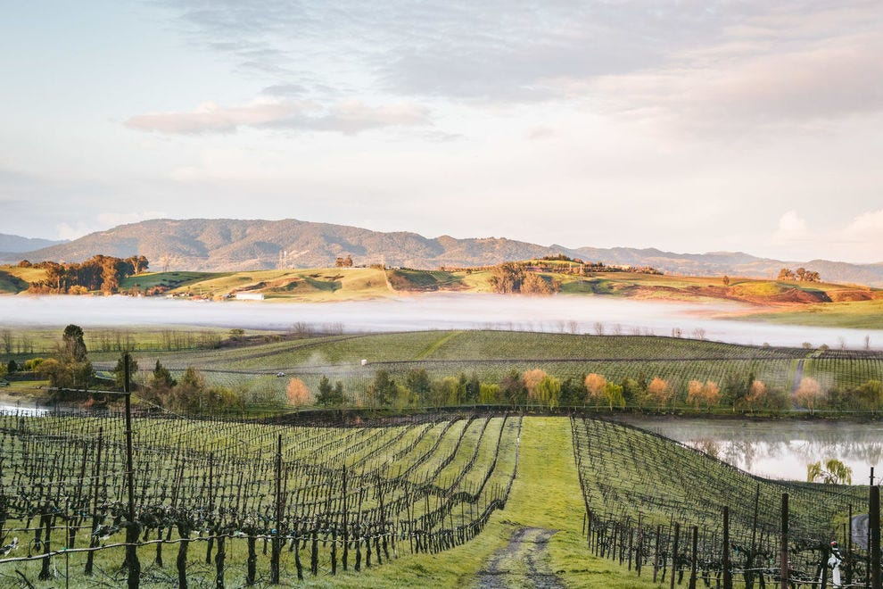 Winery tours at Cline Cellars show off Sonoma scenery