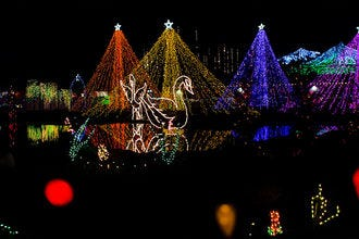The Lights of Christmas Festival
