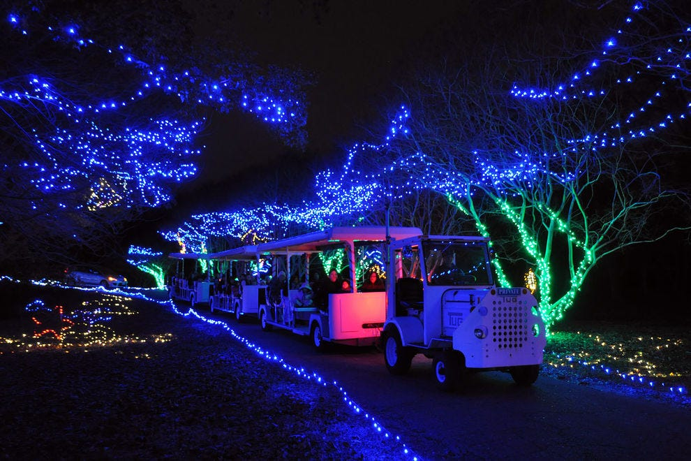 Million Bulb Walk/Dominion Energy Garden of Lights