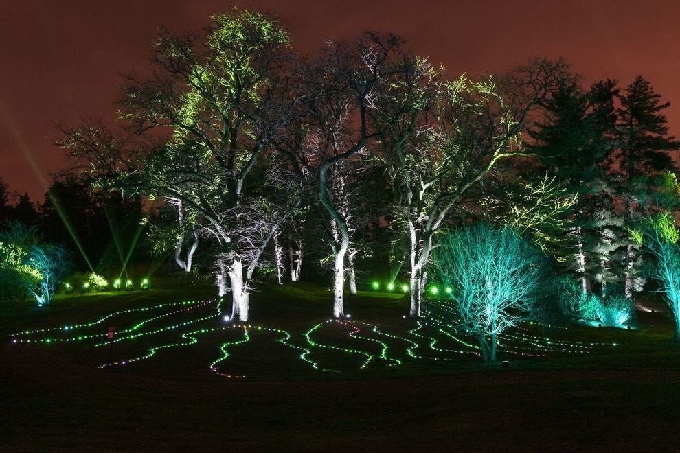 Illumination: Tree Lights
