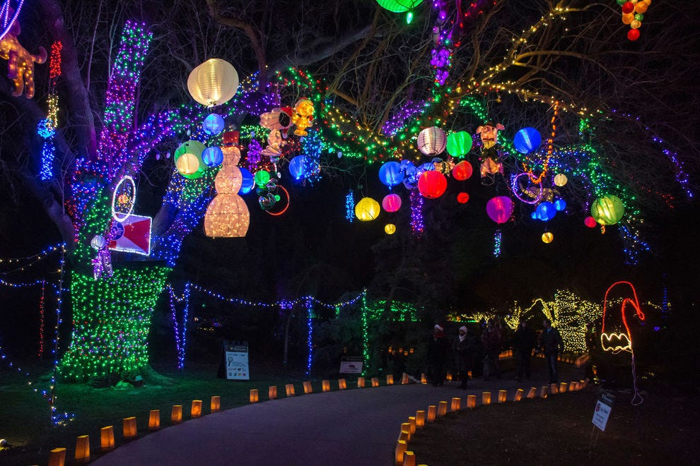 Best Christmas Lights Abq 2020 Best Botanical Garden Holiday Lights Winners (2019) | USA TODAY 10Best
