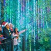 Best Botanical Garden Holiday Lights